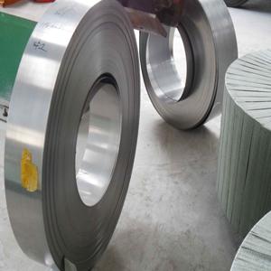 strip india Exporter in steel